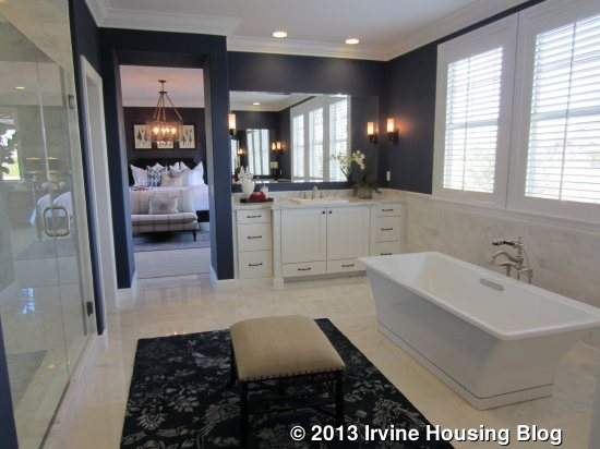 Captivating Master Bathroom Laundry Room Combo November